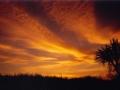 sunset-from-the-garden-slider