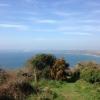 Glorious Easter in Veryan